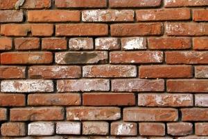 Builder Burton on Trent